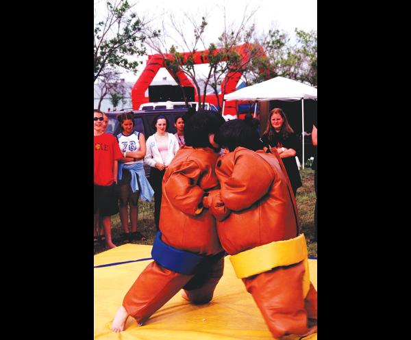 Sumo Wrestling Game